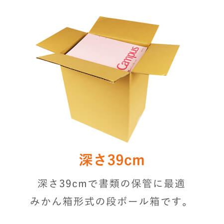 【宅配100サイズ】A4サイズ 段ボール箱