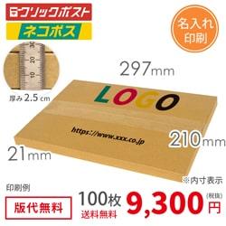 【名入れ】A4厚さ2.5cm・ヤッコ型ケース(ネコポス・クリックポスト)
