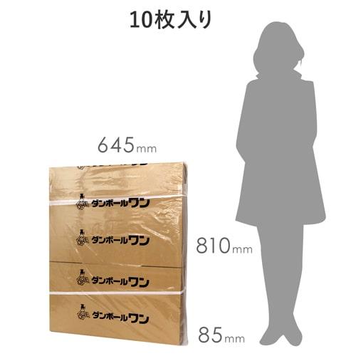 引越しダンボール1人用 10枚セット(大・120サイズ)