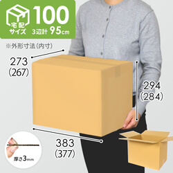 【宅配100サイズ】広告無し 段ボール箱