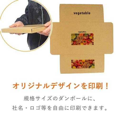 【社名・ロゴ印刷 フルカラー】A4厚さ2.5cm・ヤッコ型ケース(ネコポス・クリックポスト)※印刷版代無料