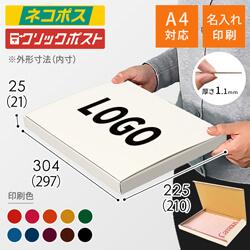 【名入れ印刷】A4厚さ2.5cm・N式ケース・白(ネコポス・クリックポスト)