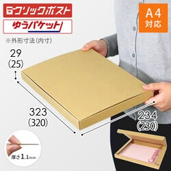 【クリックポスト・ゆうパケット】A4厚さ3cm・N式ケース※材質変更しました