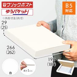 【クリックポスト・ゆうパケット】B5厚さ3cm・N式ケース(白)
