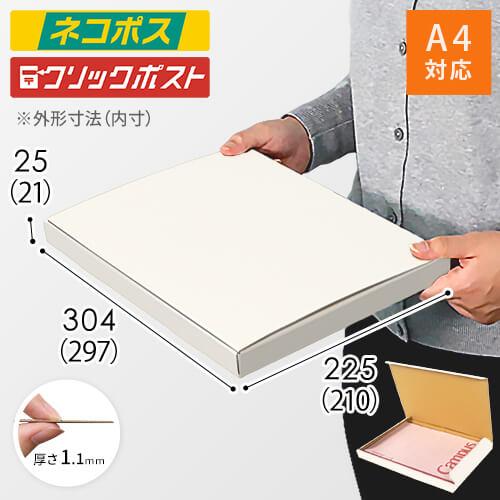 【ネコポス・クリックポスト】A4厚さ2.5cm・N式ケース(白)