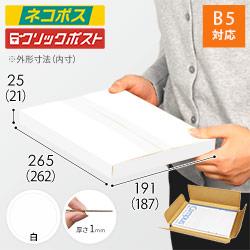 【ネコポス・クリックポスト】B5厚さ2.5cm・ヤッコ型ケース(白)