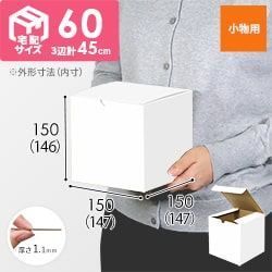 小物用 15cm立方体ケース(白)