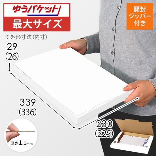 【ゆうパケット最大】A4厚さ3cm・ジッパー付きケース(白)