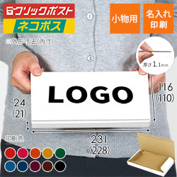 【名入れ印刷】厚さ2.5cm・N式ケース・白(ネコポス最小・定形外郵便)