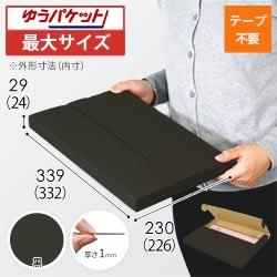 【クリックポスト・ゆうパケット最大】A4厚さ3cm・テープレスケース(黒)