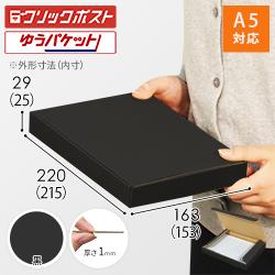【クリックポスト・ゆうパケット】A5厚さ3cm・N式ケース(黒)