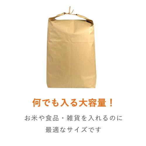 宅配袋 底マチ付き(特大)紐付き・テープなし 巾490×高さ800×底マチ100mm