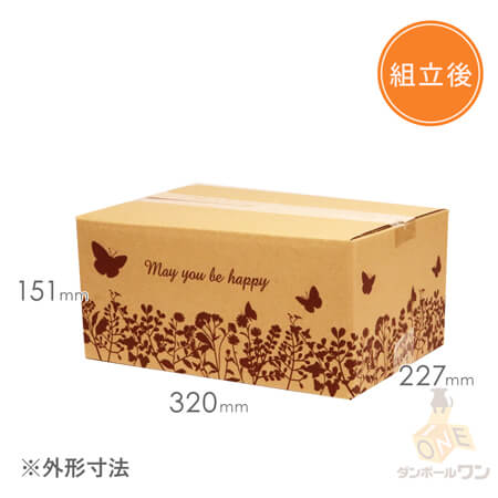 【宅配80サイズ】デザインBOX(バタフライ)