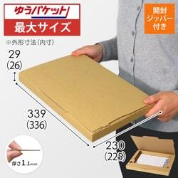 【ゆうパケット最大サイズ】ジッパー付きケース