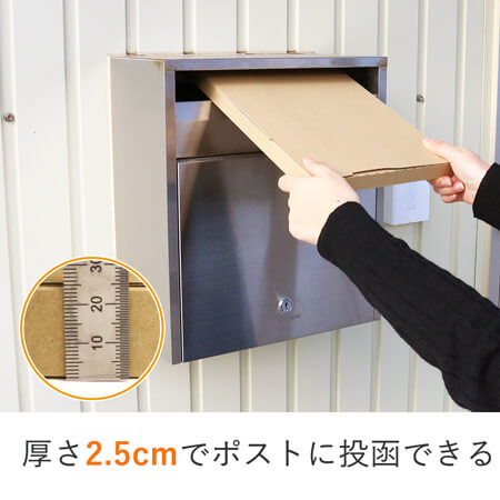 【ネコポス最大】A4厚さ2.5cm・ジッパー付きケース