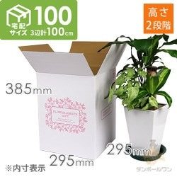 フラワーギフト 発送BOX(外箱のみ)【宅配100サイズ】