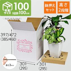フラワーギフト 発送BOX(鉢押えセット)【宅配100サイズ】