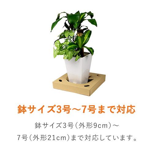 フラワー鉢押え用中枠【宅配100サイズ】