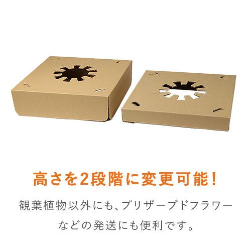 フラワー鉢押え用中枠【宅配120サイズ】