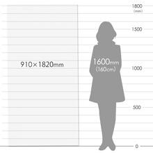 養生プラダンシート 三六判(幅910×長さ1820mm)4mm厚・半透明