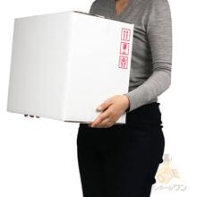 【宅配100サイズ】重量物対応 段ボール箱(白・ケアマーク付き)