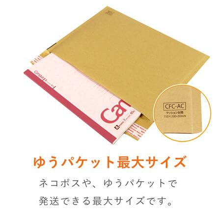 クッション封筒(ネコポス最大)※A4不可
