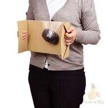 フィルム付き段ボールパット B5(長さ270×幅185×高さ110mm)1.5mm厚