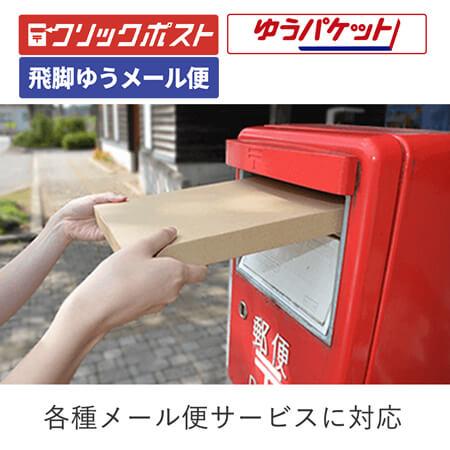 【クリックポスト・ゆうパケット】デザインメール便ケース(A4厚さ3cmテープレス)