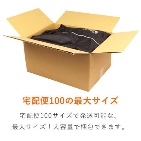 【広告入】宅配100サイズ 定番段ボール箱(DA006)