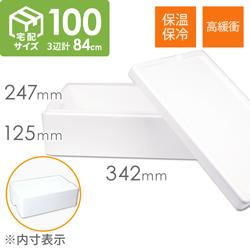 【宅配100サイズ】発泡スチロール箱