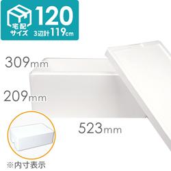 【宅配120サイズ】発泡スチロール箱