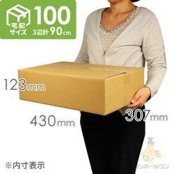 【宅配100サイズ】段ボール箱(定形外郵便最大・国際郵便対応)※キャンペーン価格
