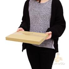 【楽天ロゴ入り】A4厚さ3cm・ヤッコ型ケース