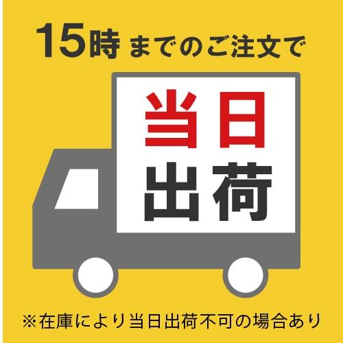 【宅配100サイズ】引っ越し・梱包用 段ボール箱(底面A4)