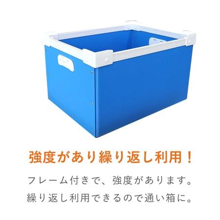 【宅配120サイズ】プラダンコンテナ(取っ手付)通い箱・保管用
