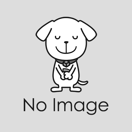 クッション封筒・白(CD)